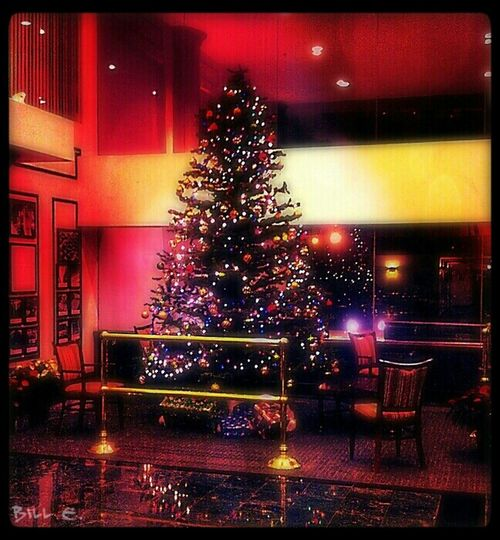 Oh Christmas Tree....