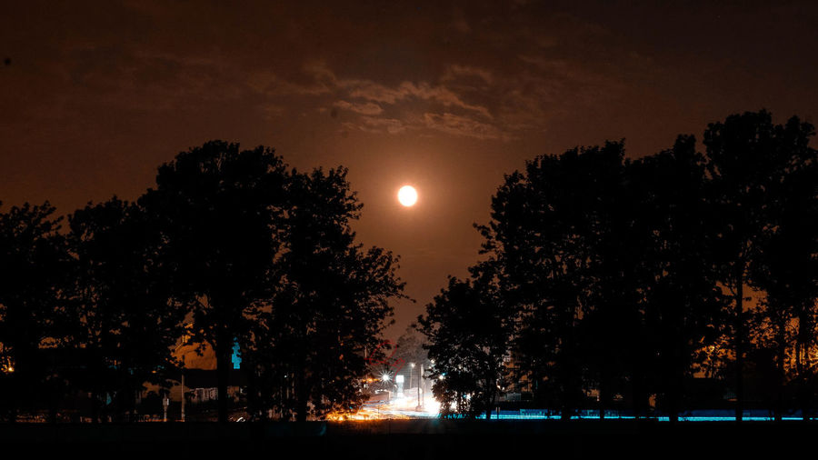 long exposure on a full moon,,,, HUAWEI Photo Award: After Dark Beauty In Nature Full Moon Illuminated Moon Moonlight Nature Night Outdoors Plant Silhouette Sky Tranquility