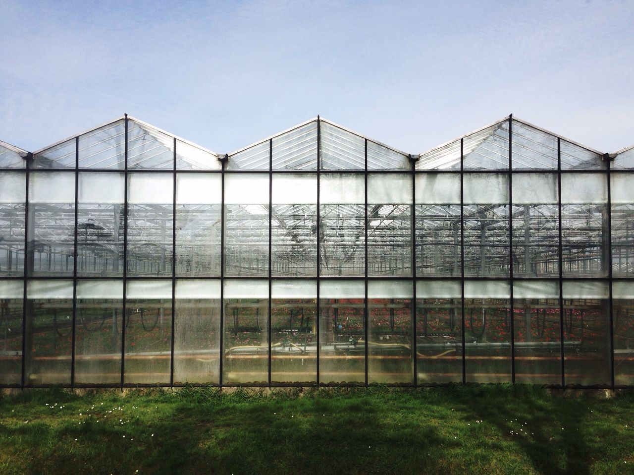 Low Angle View Of Greenhouse