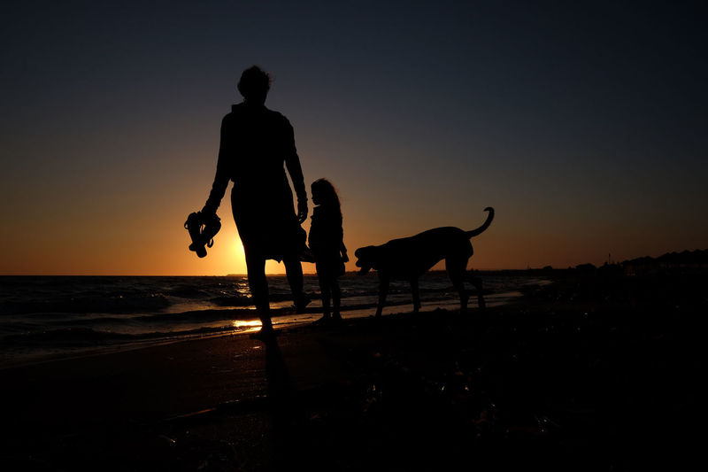 Beach Beauty In Nature Dog Domestic Animals Full Length Horizon Over Water Horseback Riding Leisure Activity Lifestyles Mammal Men Nature Outdoors Pets Real People Scenics Sea Silhouette Sky Standing Sunset Togetherness Two People Walking Water