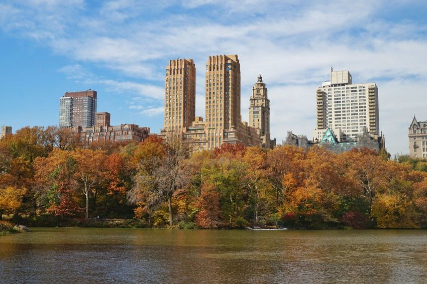 Central Park New York City New York Seeing The Sights My Best Photo 2015 Traveling Showcase: November At The Park Buildings Urban Landscape Battle Of The Cities