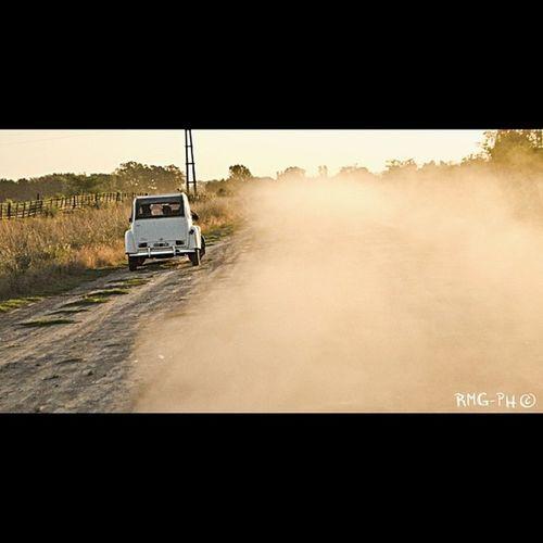 Auto Autos Car Cars Automovil Rastasmgph