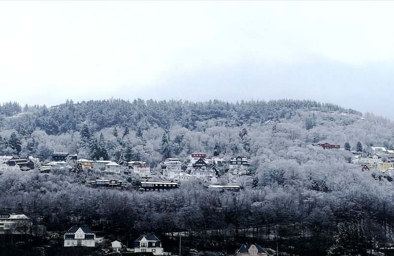 Scandinavia Norway Bergen Houses Snow March Spring Cold Temperature White Sky Shadows & Lights Tree Snow Winter Cold Temperature Water Fog Mountain Nautical Vessel Sky