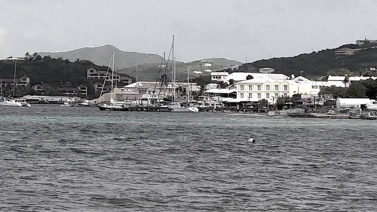 Looking across from Richmond towards the harbor and seaplane port at Watergut with Gallows Bay in the shaded area on the left. Black And White St. Croix, Virgin Islands
