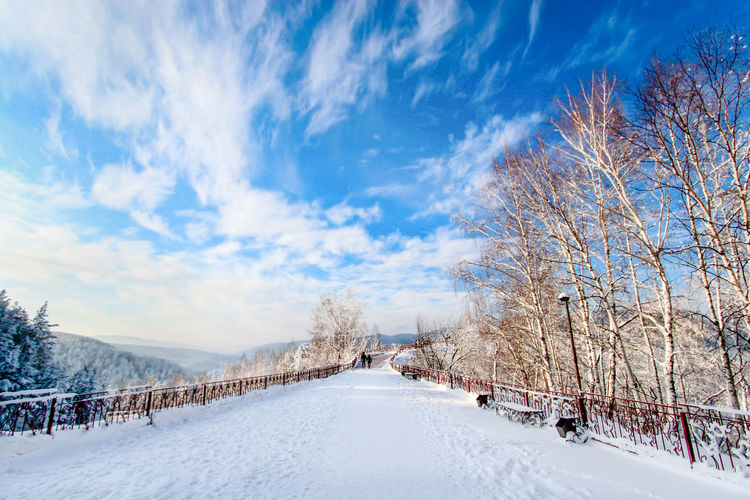Blue Sky Clouds And Sky Cold Temperature Day Krasnoyarsk Landscape Nature Outdoors Path Russia Sky Snow Traveling Tree Winter