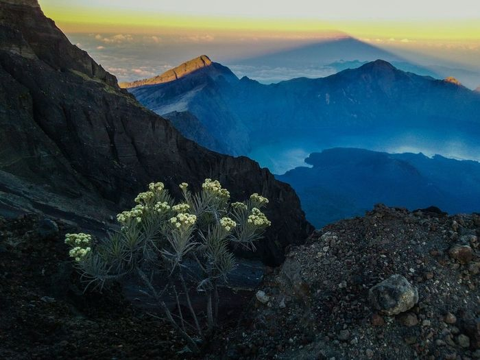 View from the crater toward summit @ mount rinjani, lombok and the mountain on the background is mount Agung, Bali Segara Anak Lake Rinjani Crater Lake Mountain View Mountain Hiking Edelweiss Sky And Mountains Landscape Sky And Clouds