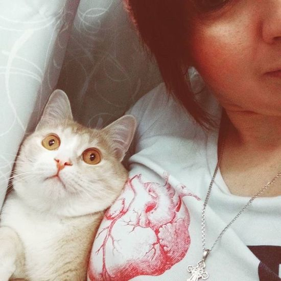 Отпусти меня Shanti несчастный_кот любовь 💓