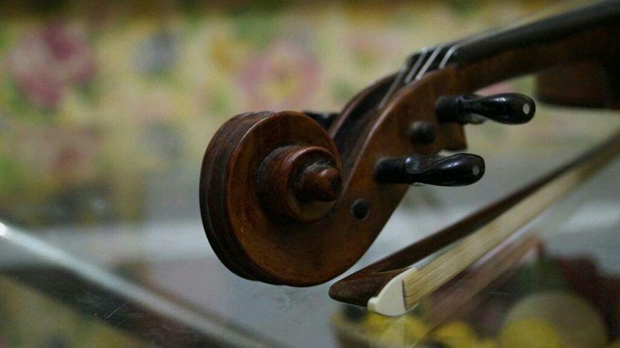 скрипка1