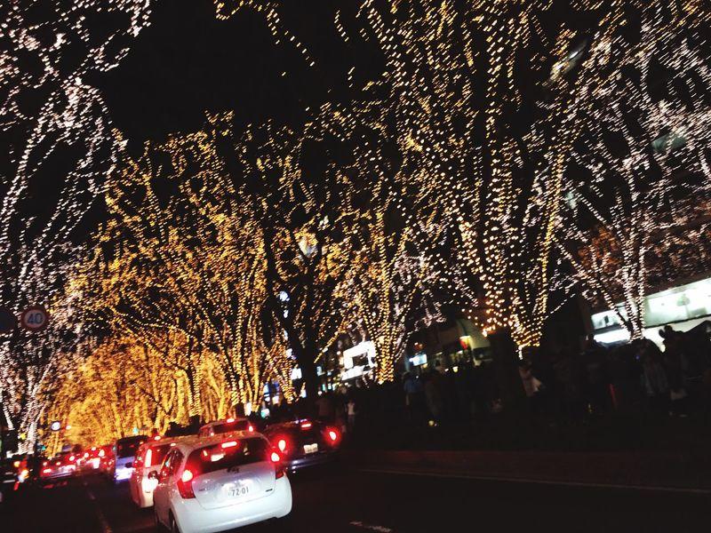 光のページェント Night Illuminated Christmas Christmas Lights