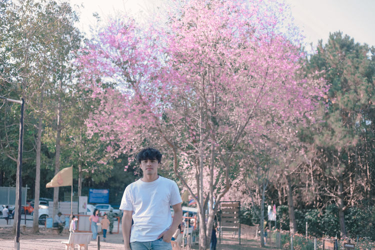 Full length of man and pink flowering trees in park