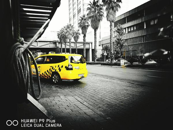 Color Of Life Sandton Taking Photos Hello World Photooftheday Color Splash Be Bold, Be Colorful Be Bold. Be Happy. Be You. Check This Out Live Huaweiphotography Huawei Huawei P9 Plus