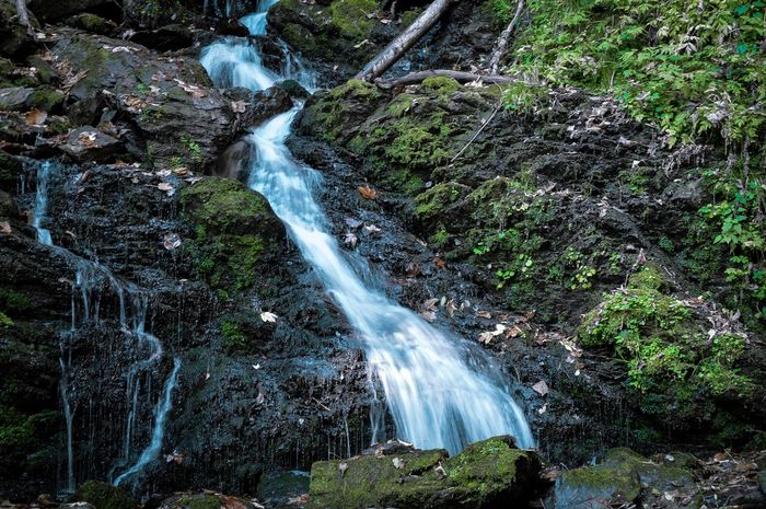Bösensteiner Wasserfall Nikon D3200 Nikonphotographer Fantasy Dreamworld Water Motion Tree Waterfall Plant Beauty In Nature Forest Long Exposure Scenics - Nature Flowing Water Nature Land No People Blurred Motion Outdoors