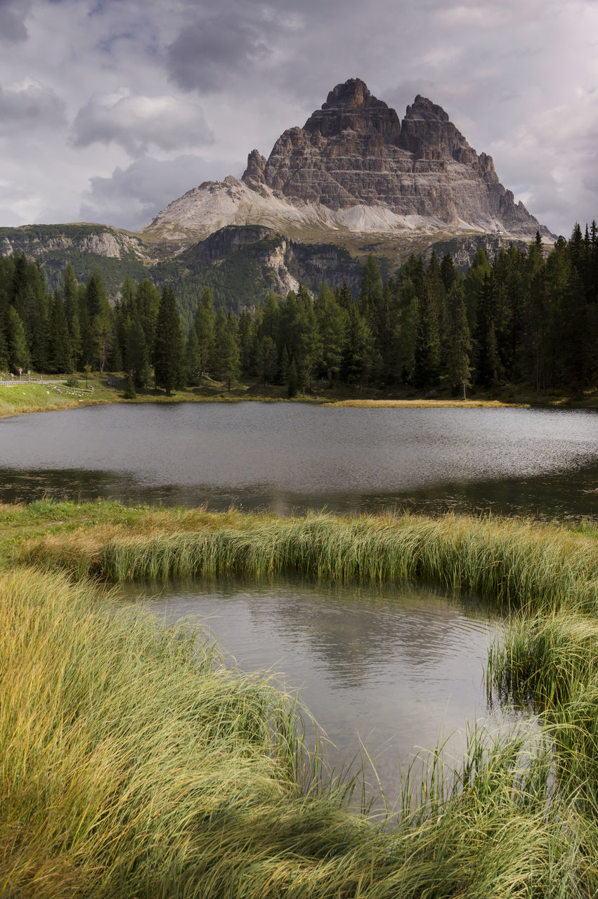 water, plant, beauty in nature, tranquil scene, tranquility, scenics - nature, sky, cloud - sky, lake, mountain, grass, nature, no people, non-urban scene, growth, day, tree, idyllic, reflection, outdoors, mountain peak