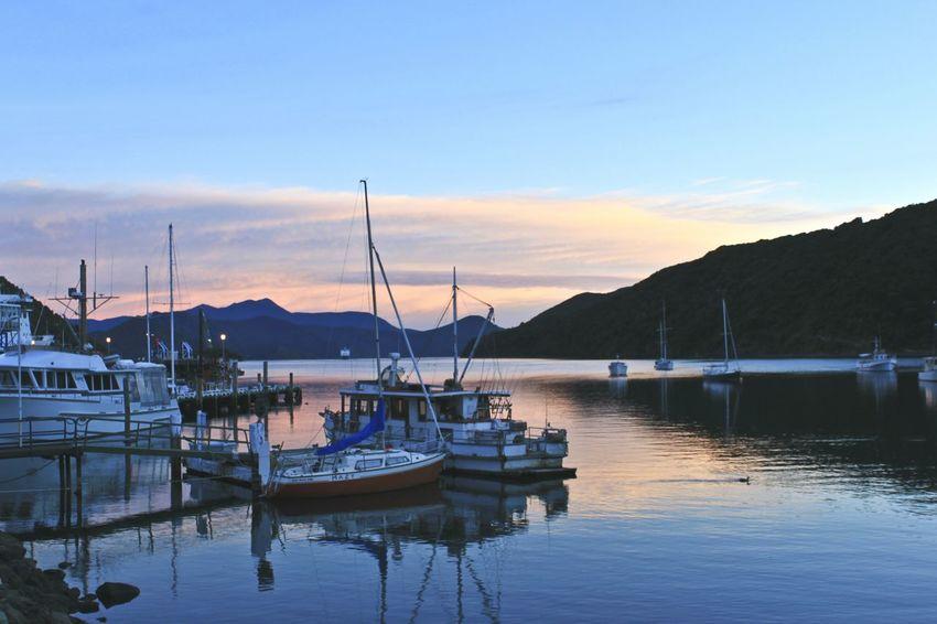 Sunrise at Picton Harbour ⛵ // Picton  New Zealand Harbour Landscape_photography Oceanside Wanderlust Sunrise