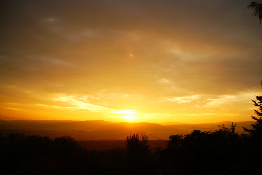One of the last nice autumn sunsets on the end of the autumn Autumn Orange Beauty In Nature Gold Colored Landscape Nature No People Orange Color Outdoors Pilis Pilisszántó Relaxation Scenics Silhouette Sky Sun Sunset Tranquil Scene Tranquility Tree