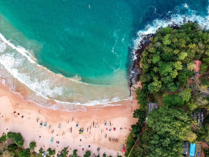 Look this!!! Nature Scenics - Nature Tree Aerial View Beach Beauty In Nature Travel Travel Destinations No People High Angle View Outdoors Tranquil Scene Plant Turquoise Colored Water Land Architecture Day Sea