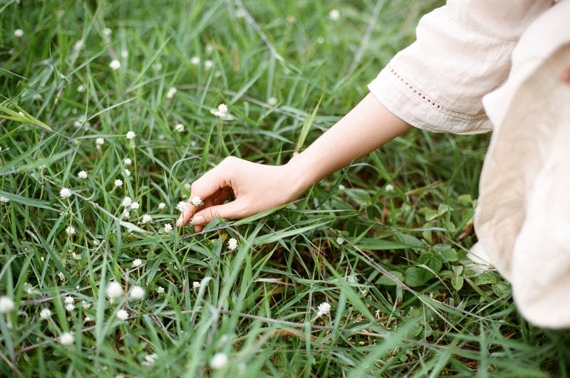 Midsection of woman hand on grass field