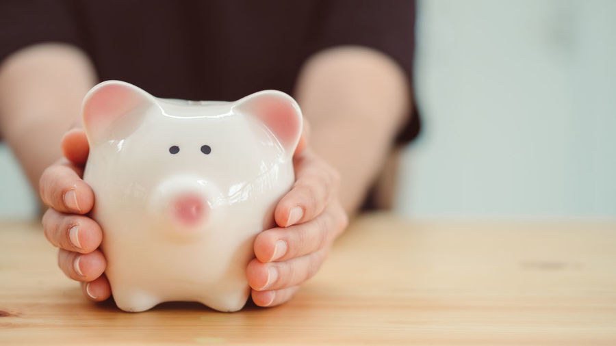 Saving money concept Budget Childhood Close-up Coin Currency Day Finance Focus On Foreground Holding Human Body Part Human Hand Indoors  Investment One Person People Piggy Bank Real People Savings Wealth