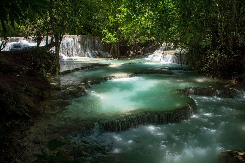 Paradise Beauty In Nature Day Forest Freshness Idyllic Kuang Si Waterfalls Landscape Laos Luang Prabang Luangprabang Nature No People Outdoors Paradise Scenics Social Issues Sunlight Tourism Tranquil Scene Tranquility Travel Destinations Tree Vacations Water Waterfall