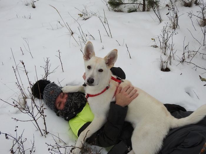 White German Shepherd Animal Themes Cold Temperature Day Dog Domestic Animals Friendship Mammal Nature No People Outdoors Pets Puppy Sitting Snow Togetherness Winter