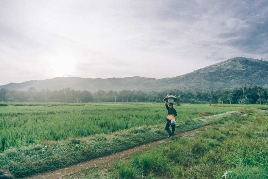 Adult Adults Only Agriculture Beauty In Nature Day Farmer Field Fog Landscape Mountain Nature One Person Outdoors People Real People Rural Scene Sky Working EyeEm New Here Paddy Field Paddy Occupation EyeEmNewHere Women Around The World The Great Outdoors - 2017 EyeEm Awards