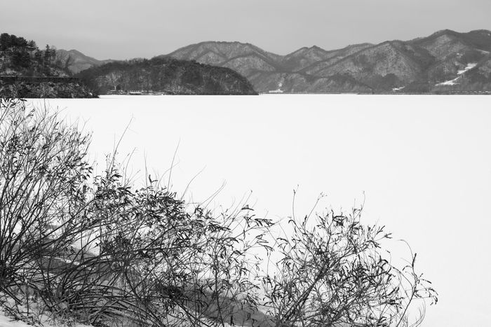 black and white image of snow-covered lake, Uiamho Lake in Chuncheon, Gangwondo, South Korea Black & White ChunCheon Cold Lake Cold Weather Gongjicheon Snow Land Uiamho Lake Winter Winter Landscape Beauty In Nature Black And White Blackandwhite Bw Clear Sky Cold Cold Temperature Day Lake Landscape Mountain Mountain Range Nature No People Outdoors Plant Scenics Sky Snow Snow-covered Snow-covered Lake Tranquil Scene Tranquility Tree Water Winter Winter Lake Winter Land Winter Time