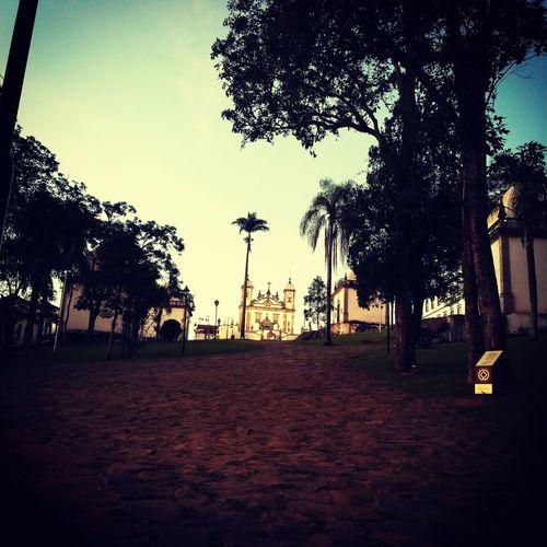 Das belezas de Minas...(Santuário do Bom Jesus de Congonhas-MG) Tree Palm Tree Park - Man Made Space Nature Tranquility No People Beauty In Nature Day