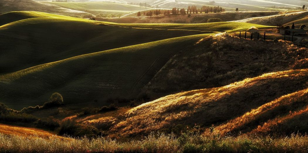 Golden Hour Toscana Toskana Toskana,italy Landscapes The Essence Of Summer