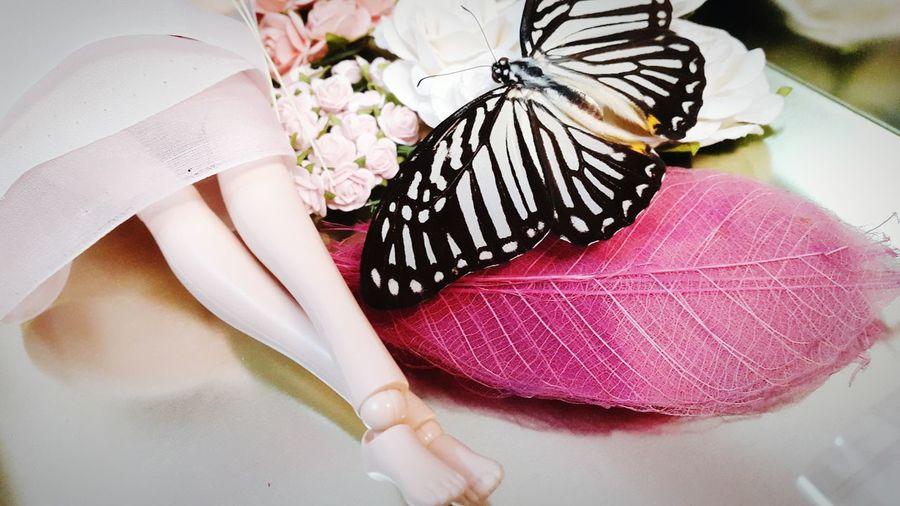 Volk Doll Butterfly Flowers Madebyme Taken Photos Sewing By Hand EyeEm Vietnam