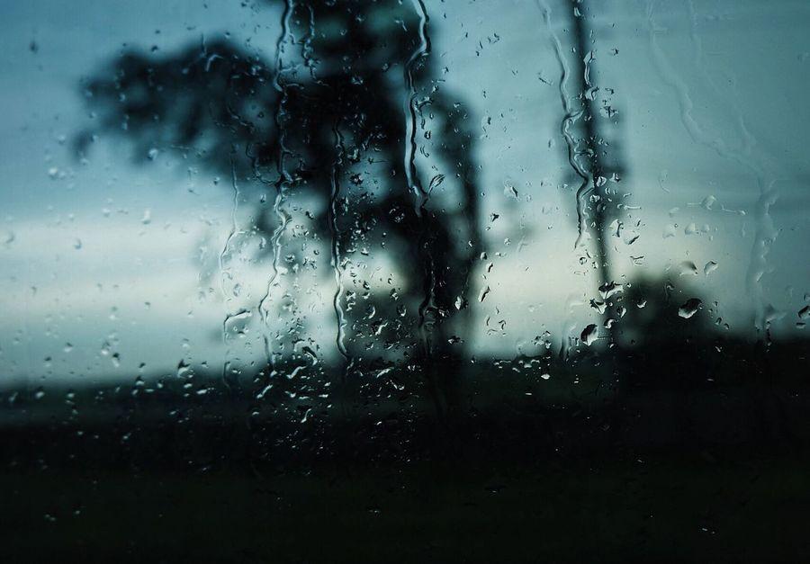 Backgrounds Condensation Drop Glass - Material Indoors  Nature Rain RainDrop Water Weather Wet Window The Week On EyeEm