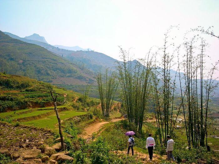 Mountain Vietnam