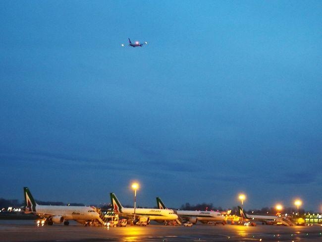 Departing From Milan Linate... Airplane Transportation Air Vehicle Sky Landscape Milan,Italy Departure Departing Dawn Light Dawntime Lights
