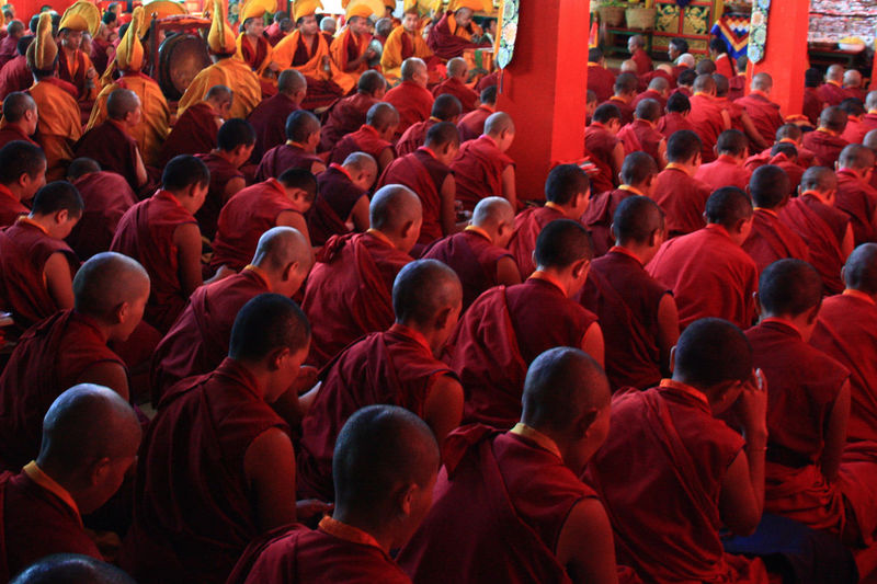 Monks praying in temple