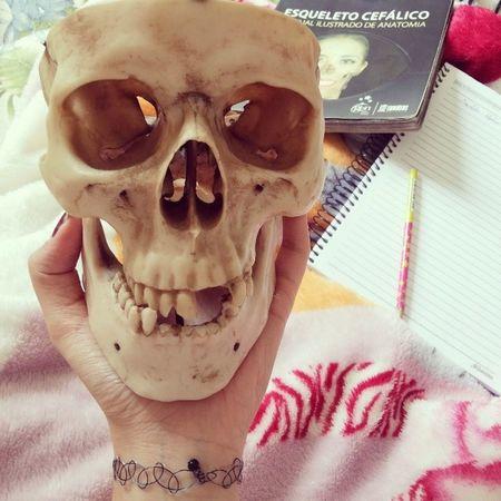 Bora estudar Esqueletocef álico Anatomia Depress ãopréprova