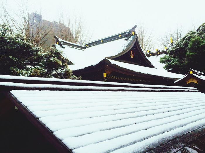 Today's Weather Report , Snow , White Shitaya Shrine,