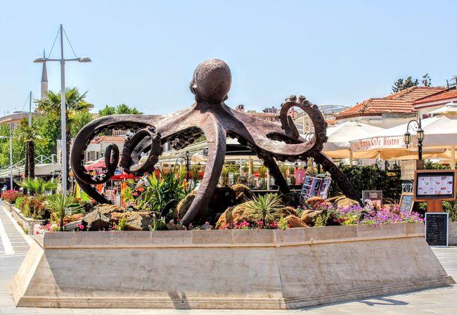 Marmaris Marmaris, Turkey Statue Octopus Something Different Check This Out This Week On Eyeem EyeEm Best Shots Interesting