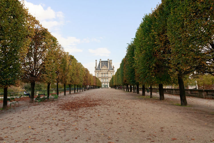 If Trees Could Speak Iftreescouldspeak France Louvre Paris ❤ Trees Architecture Autumn Building Exterior Built Structure City Day Museum Nature No People Outdoors Sky The Way Forward Tourist Destination Travel Destinations Visual Creativity