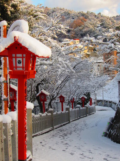 Snowy covered Lanterns Frozen Lanterns Lanterns In Snow Nature No People Red Shrines & Temples Snow Winter Japanese Temple Japanese Shrine Japanese Style Japanese Architecture Japanese Lanterns Winter In Japan lantern snow Snow Covered Landscape Snow Covered Snow Covered Shrine snow covered lantern Neon Life Shades Of Winter