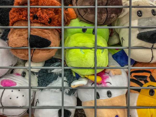 Caged and stuffed animals Animal Themes Arrangement Caged Caged Animals Close-up Cuddlebuddy Cuddly For Sale Full Frame Large Group Of Objects Multi Colored No People Retail  Stuffed Animals Stuffed Toy Toys Variation