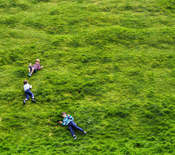 Grass High Angle View Field Green Color Playing Imagination Childhood Hillside Colorful EyeEmNewHere