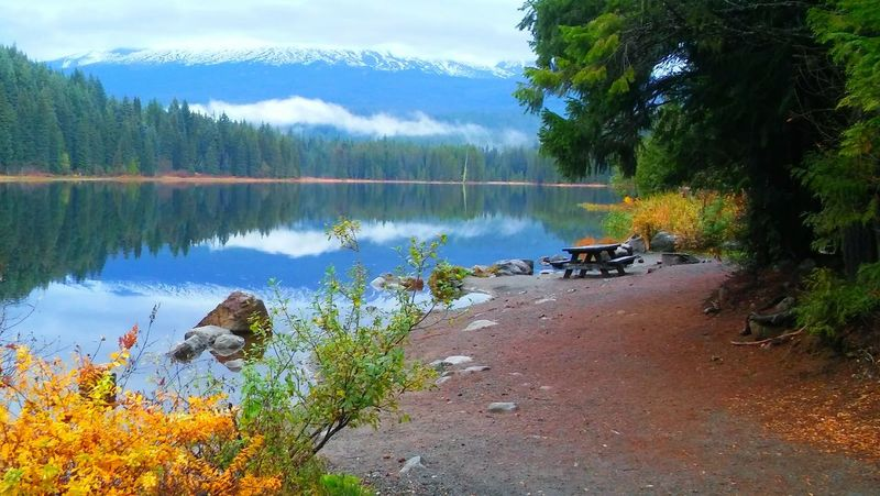 Clouds Nature Landscape Trees Pic Of The Day Reflections Lakeshore Travel Photography Tranquil Scene Fall Colors Trillium Lake Mt. Hood  LG Phone Camera