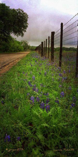 ...across Texas 141 Landscape_Collection NEM Submissions AMPt_community Where I'd Rather Be... NEM Landscapes EyeEm Nature Lover NEM Painterly EyeEm Best Shots Mexturesapp NEM GoodKarma