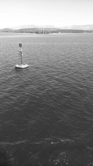 EyeEm EyeEm Best Shots EyeEm Best Edits Taking Photos Taking Pictures Sea Buoy Black & White Trees And Sky In Igoumenitsa , Greece