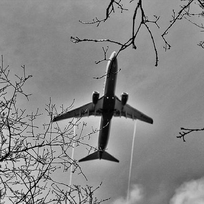 It howls over the treetops Flight Instaflight Airplane Instaairplane blackandwhite treetops howl ig_sweden wu_sweden gloryofsweden instag_app Instagood Photooftheday Picoftheday Instadaily Instalike Webstagram All_shots Instago Instacool Cool Sky Photo Picstitch Instaphoto Clouds Picture Pic View Up