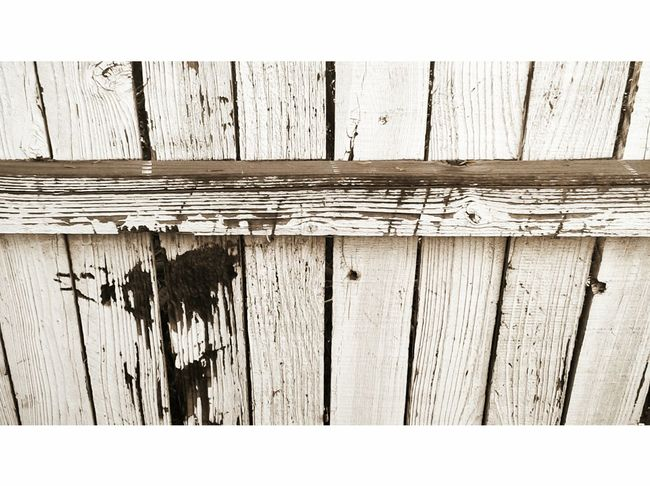 Rustic, wooden fence, Weathered Fence White Fence Outdoors