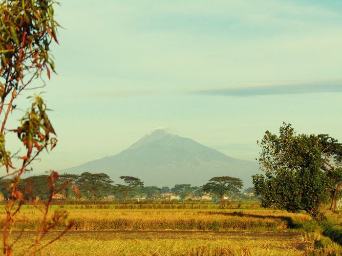 Volcano from