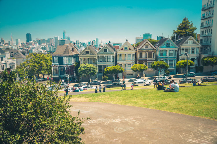 Building Exterior Architecture Built Structure Building Plant House Tree City Residential District Sky Nature Day Sunlight Grass Clear Sky No People Outdoors Blue Street Transportation Row House San Francisco Skyline Painted Ladies San Francisco