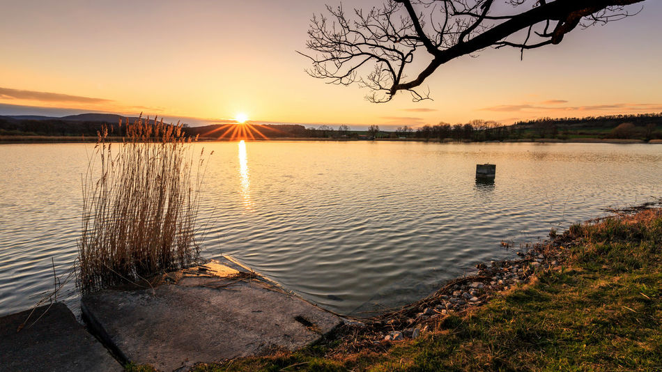 Sonnenuntergang Veckenstedter Teiche EyeEm Nature Lover Sunlight Veckenstedt Bare Tree Beauty In Nature Harz Idyllic Lake Lens Flare Nature No People Orange Color Outdoors Plant Reflection Scenics - Nature Sky Sun Sunlight Sunset Tranquil Scene Tranquility Tree Water