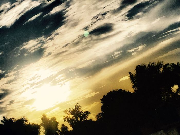 Sunsets are the best 🌳🌳🌳🌅🌅🌅 Taking Photos Hanging Out Check This Out