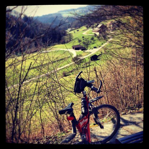 My beloved bicycle ?